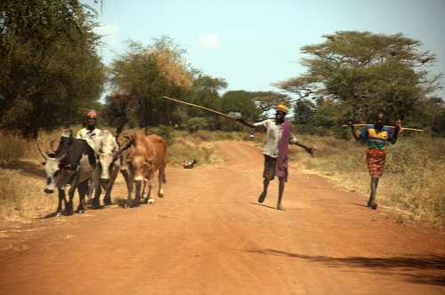 Afrika, Uganda, popotniški blog, potovanje po Ugandi, ljudstvo Karamoja