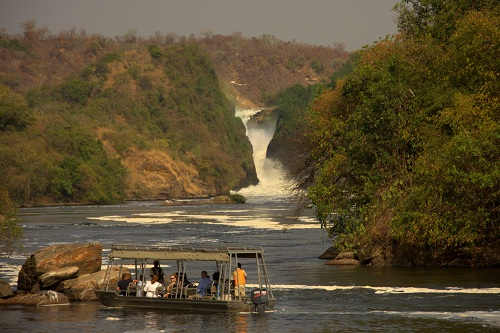 Afrika, Uganda, potovanje, popotniški blog, narodni park Murchison Falls, reka Nil, ptice