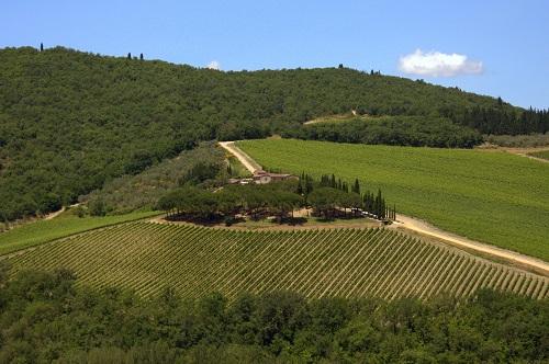 Toskana, izlet v Toskano, Chianti vino, popotniški blog