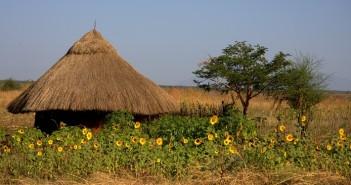 Potovanje v Afriko, Afrika potovanje