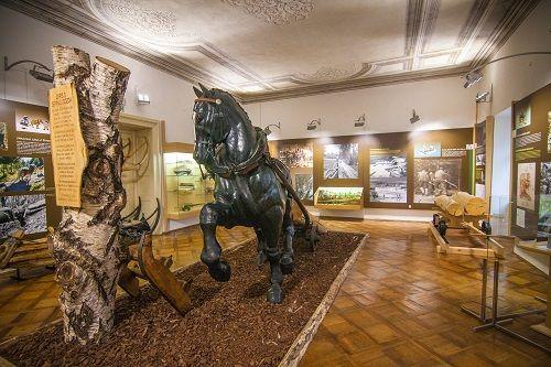 Tehniški muzej Slovenijee, Tehniški muzej Bistra, muzeji po Sloveniji, kam na izlet