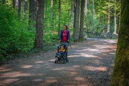 Bavarski gozd, Nemčija potovanje, Nemčija z avtom