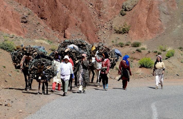 potovanje v Maroko, Maroko potovanje, z avtom v Maroko, Maroko znamenitosti, Maroko potopis