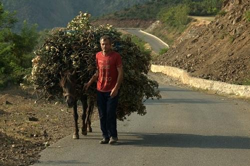 Albanija, potovanje po Albaniji z avtom, popotniški blog