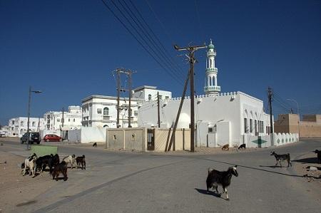 Oman, Sur, ribištvo, potovanje, popotniški blog
