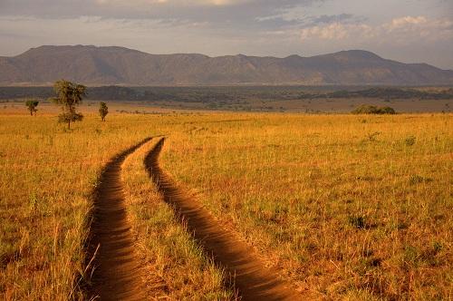 Afrika, Uganda, safari,narodni park Kidepo, potovanje, popotniški blog