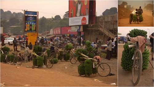 Afrika, Uganda, Fort Portal, čajni nasadi, matoke, afriška tržnica, potovanje, popotniški blog