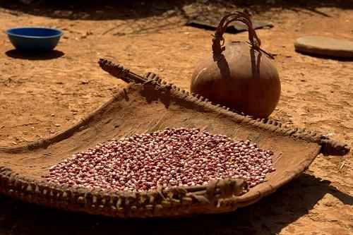 Afrika, Uganda, Karamojo pleme, potovanje, popotniški blog