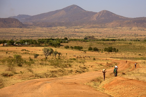 Afrika, Uganda, pleme Karamojo, potovanje, popotniški blog