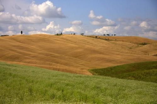 Toskana, izlet v Toskano, toskanski griči, popotniški blog