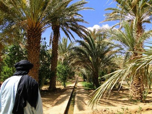 oaza,namakalni sistemi, Maroko, potovanje, znamenitosti