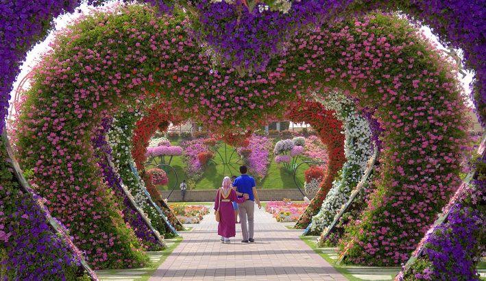 botanični vrtMiracle Garden, botanični vrt Dubaj, Dubaj znamenitosti, znamenitosti v Dubaju, Dubaj počitnice