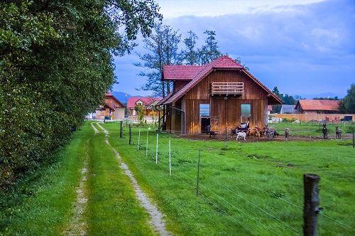 posestvo trnulja, ekološka kmetija trnulja, eko kmetija trnulja
