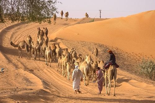 združeni arabski emirati, potovanje, arabski emirati, združeni arabski emirati potovanje, prvi maj, krompirjeve počitnice