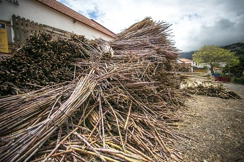 madeira znamenitosti, znamenitosti madeira, madeira potovanje