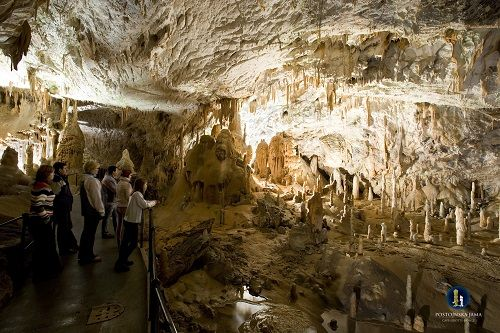 Postojnska jama - izlet