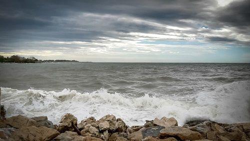 dnevi morskega lista, dnevi švoja, umag izlet