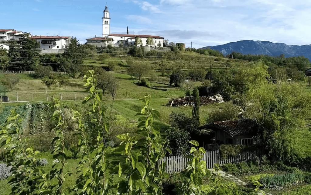 Odprte vasi in Glampyarding v Vipavski dolini